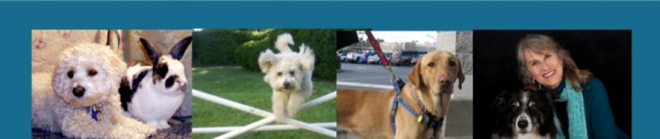 Puppy Mill AwarenessDay