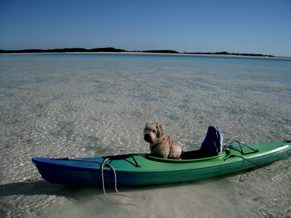 Farley kayaking in the Bahamas