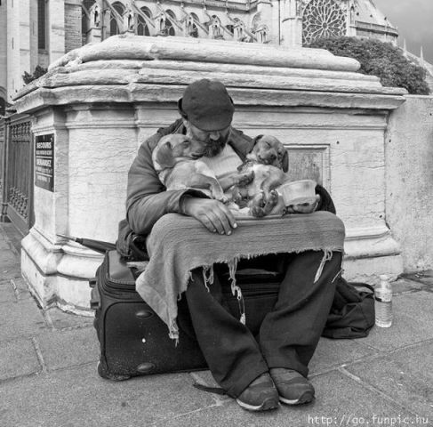 Homeless man & puppies asleep