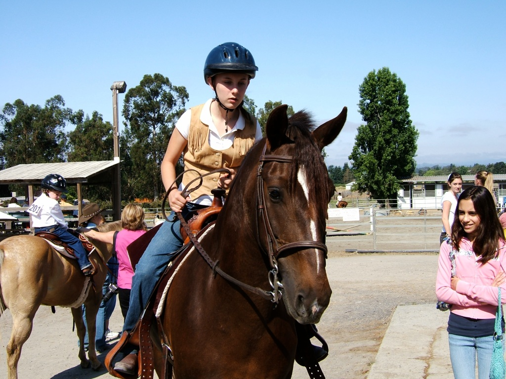 Some horse shows are fun for the horses too.